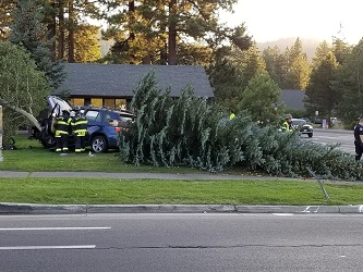 South Lake Tahoe single-car crash takes out tree, sends one to Barton