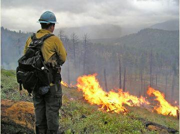 549533-prescribed-burning-south-tahoe-now.jpg