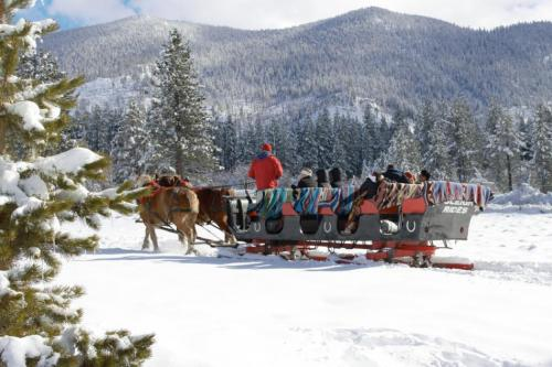551432-south-tahoe-now-sleigh.jpg