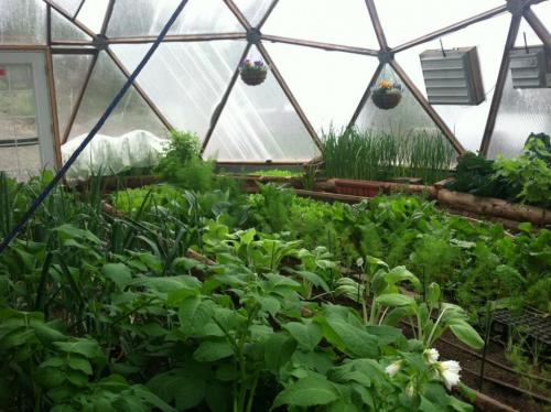 678529-sierra-house-grow-dome.jpg